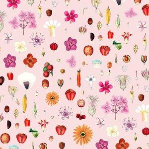 Mönstrad Trikå 150 cm - Frön Och Blommor Ljusrosa
