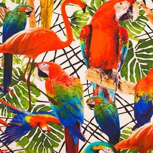 Mönstrad Trikå 150 cm - Tropiska Fåglar
