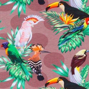 Mönstrad Trikå 160 cm - Tropiska Fåglar Ljusbrun