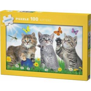 Pappussel Kittens
