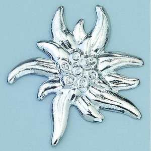 Smycke ø 23 mm - silverfärgad edelweiss